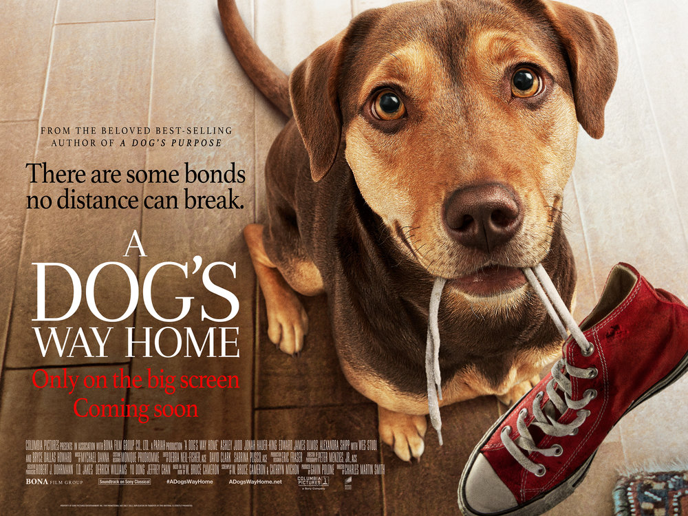 A Dogs Way Home-English Movie in London - Your London Guide